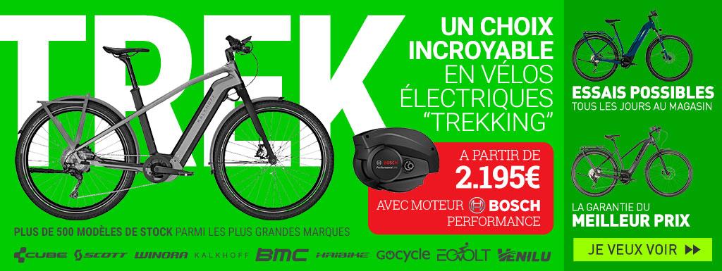 Vélos électriques Trekking
